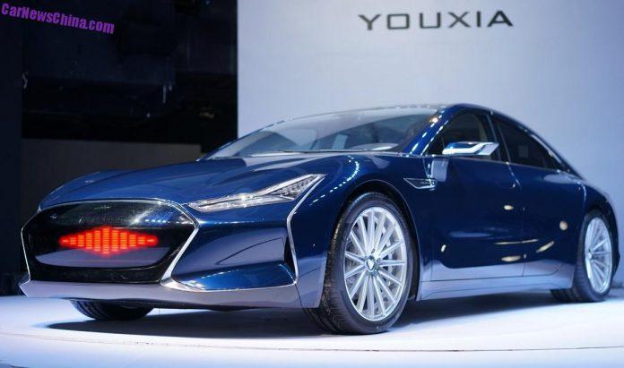 Copia cinese Tesla S