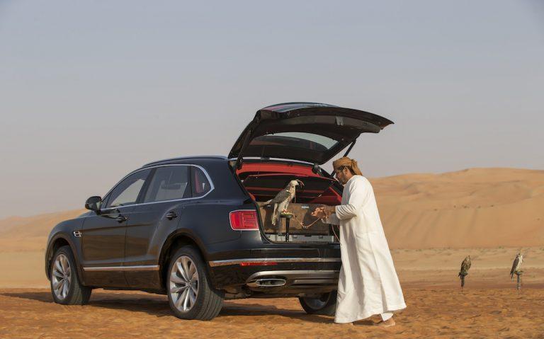 Bentley Bentayga Falconry: la one-off da falconiere, prezzi e novità