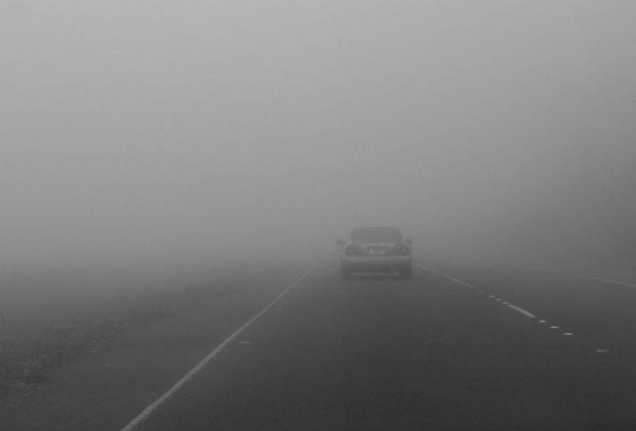 guida con nebbia